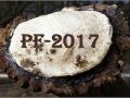 PF-2017 Klub Na web-2-OK Pecet